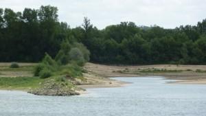 Source : épis en Loire à hauteur d'Ancenis - X. Métay - FNE Pays de la Loire