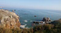 À l'occasion de la journée mondiale de l'océan (08 juin), FNE Pays de la Loire, aux côtés de Eau et Rivières de Bretagne, Bretagne Vivante et FNE, revient sur l'avis […]