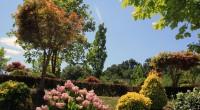 La présence d'arbres à proximité des limites de propriété engendre régulièrement des conflits de voisinage qui aboutissent parfois à l'abattage ou l'élagage sévère de certains arbres. Afin de répondre aux […]
