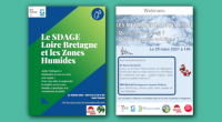 En mars, FNE Pays de la Loire vous a proposé deux webinaires sur la thématique de l'eau ! Le premier a abordé la question du SDAGE et des zones humides, […]